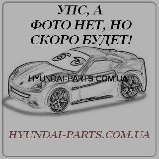 Втулка направляющей суппорта переднего, HYUNDAI ACCENT, 581641G000